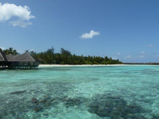 Medhufushi Island Resort: Paradise island