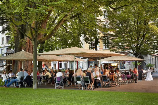 Continental-Park Hotel: bellini giardino