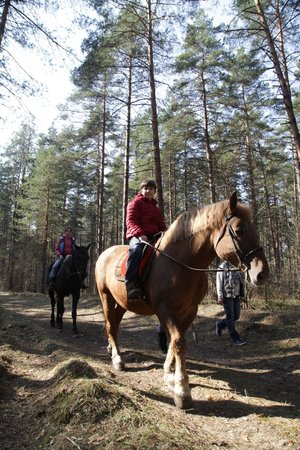Club-Hotel VeLes: Прогулка на лошадях