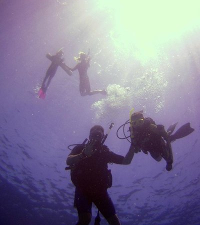Blue Wilderness Dive Adventures: 2 Divers + 2 Snorkelers = 1 Family Together!