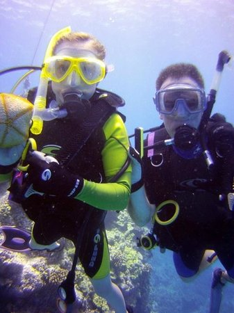 Blue Wilderness Dive Adventures : Tony found amazing wildlife for us to see!
