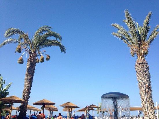 Malama Beach Holiday Village: Cudowny blekit nieba:)