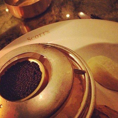 Scott's: Best caviar