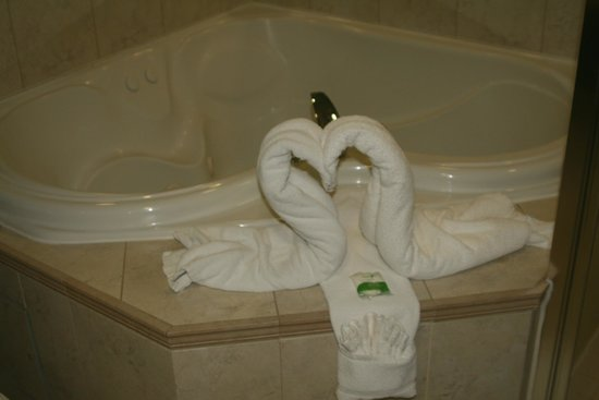 Oakes Hotel Overlooking the Falls: Towel Art