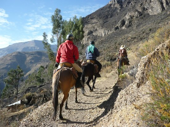 Ride in Peru -  Day Tours: ride 2