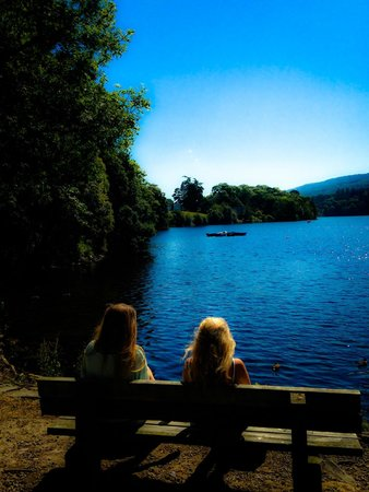 Pitlochry Boating Station Cafe: Il lago