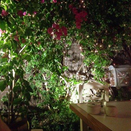 Marmita: Atmosfera magica e cibo eccellente, un ristorante unico che vale la pena provare.