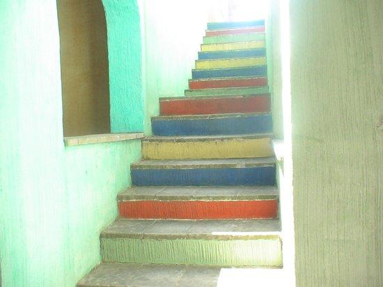 Villaggio Eden Colostrai : Le scale