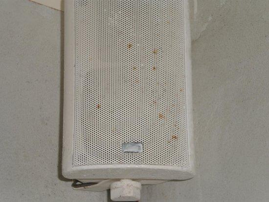 Mystique Luxury Collection Hotel: rotting speaker in bedroom