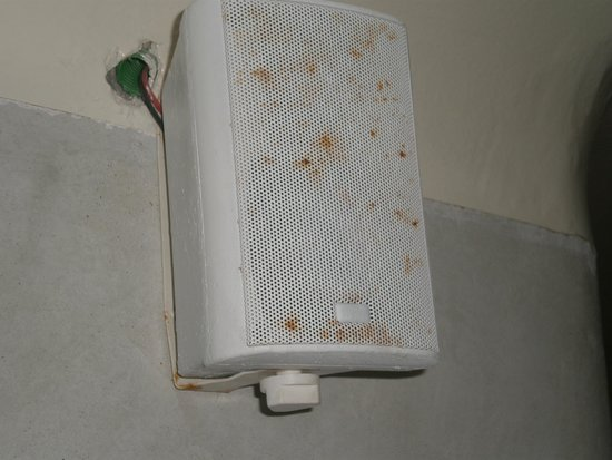 Mystique Luxury Collection Hotel: rotting speaker in bathroom