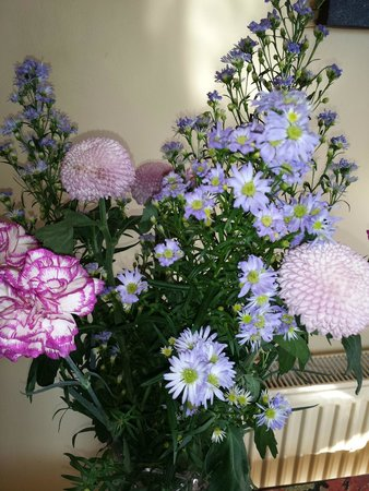 Harbour Hill Farm: Lovely flowers in the sitting/TV  room
