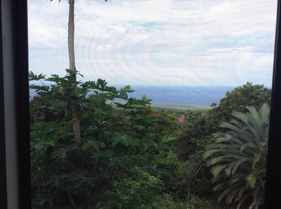 Tiki Wa Guest House & Coffee Plantation : The view from the breakfast room