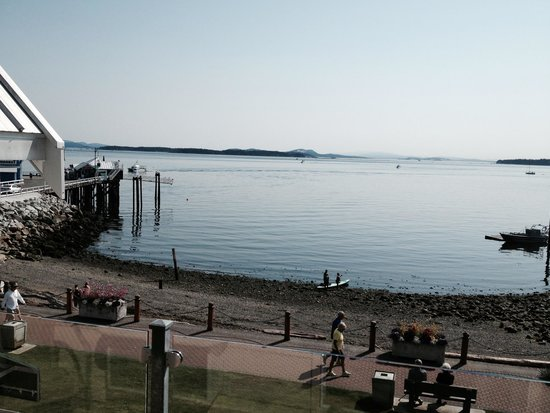 Sidney Waterfront Inn & Suites: Good morning!
