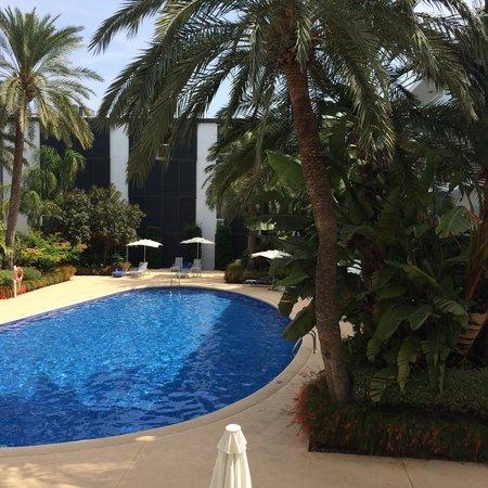 Las Gaviotas Suites Hotel: Utsikt från balkong rum 232