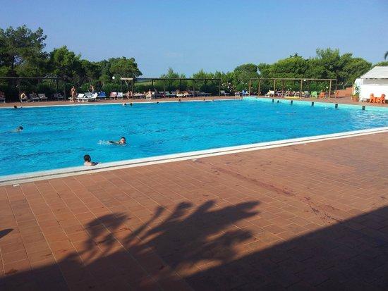 Hotel Club Santa Sabina : Piscina Stupenda e olimpionica