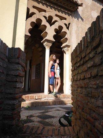 Alcazaba (fort) : interior Alcazaba