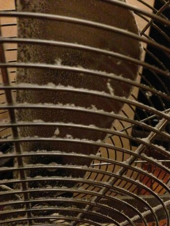 Old Thorns Golf & Country Estate: Hot weather, the fan they supplied, caked in dust.