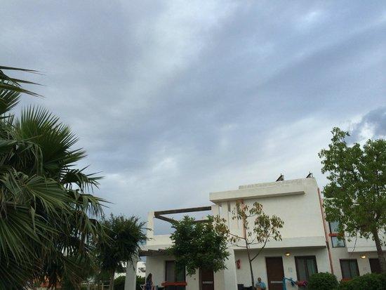 Riva Marina Resort CDSHotels: fuori