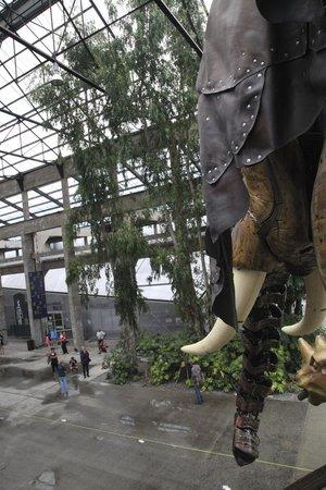 Les Machines de L'ile : De olifant is onderweg!