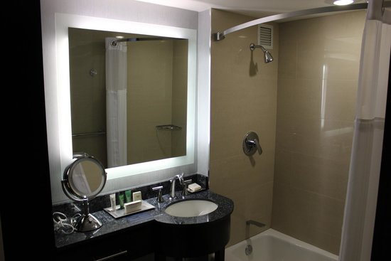 Washington Hilton : Bathroom