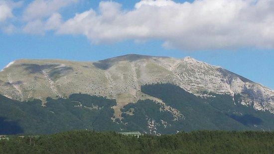 Hotel Orso Bianco: Vista dall'Orso bianco