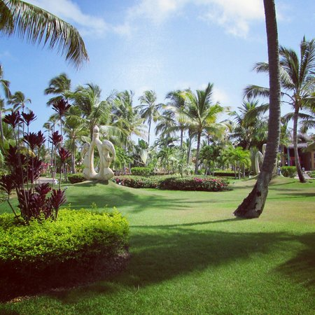 Punta Cana Princess All Suites Resort & Spa : Courtyard view standing at buffet.