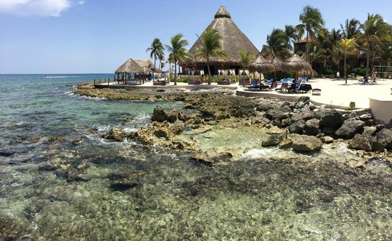 Dreams Puerto Aventuras Resort & Spa: Great view