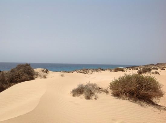 Club Jandia Princess Hotel: le dune di Corralejo