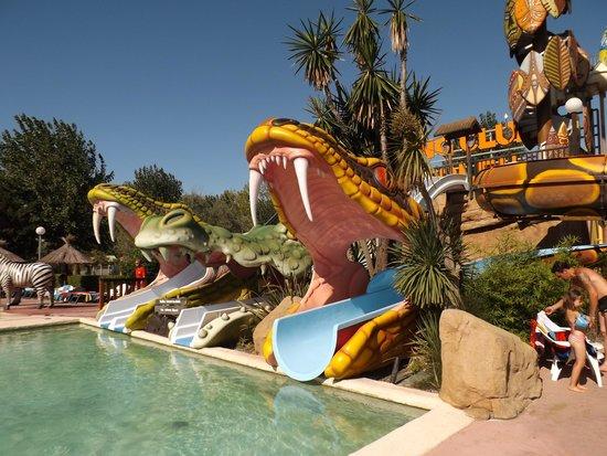 Camping Californie Plage: sorties tobogans customisées