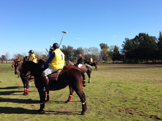 Argentina Polo Day : Great polo experience.