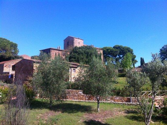 Küche - Picture of Antico Borgo Casalappi, Campiglia Marittima ...