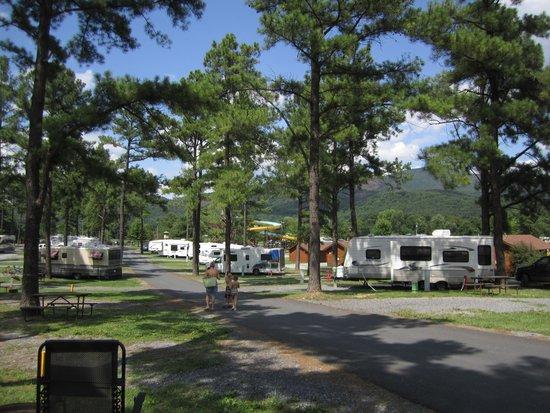 Yogi Bear's Jellystone Park Camp-Resort Luray: campsites