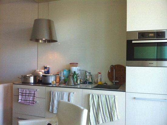 Falkensteiner Apartments Petrcane: kitchen with mcrw, oven, dishwasher, but no detergent, or dishwasing sponge