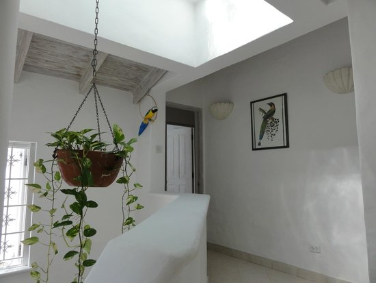 Emerald Beach: top of stairs of this light and airy villa