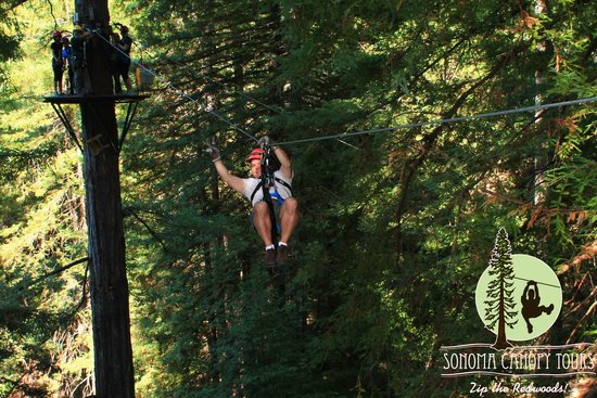 Sonoma Canopy Tours: Zipping along