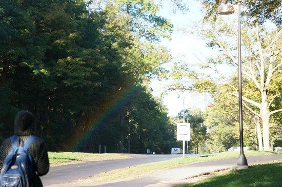 Wanderfalls Guesthouse & Hostel: Брызги везде и всюду, поэтому радуга везде. В солнечный день, конечно)