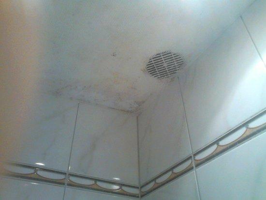 Romantik Hotel Du Parc : Plafond de la salle de bains