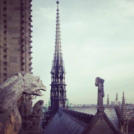 Catedral de Notre Dame: Vista do alto das torres de Notre Dame.