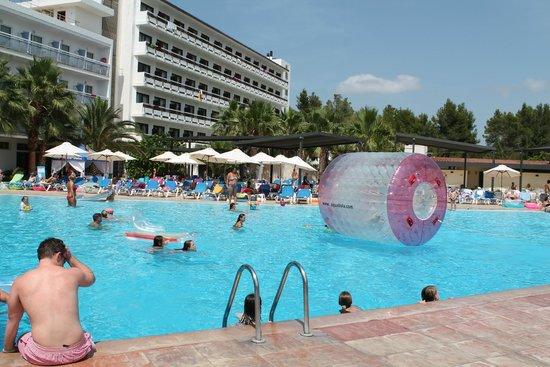 azuLine Hotel Bergantin : Inflatable hamster wheel!
