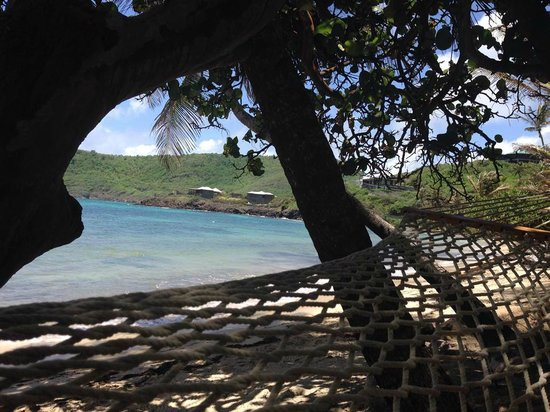 Sugar Reef Bequia : View from the hammock outside my room.