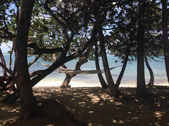 Sugar Reef Bequia : Special hammock