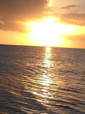Diving Dominican Republic: Beautifull