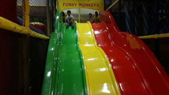 Funky Monkeys Play Center - Lower Parel : Slide