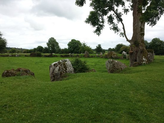Lough Gur: West end of the Great Stone Circle