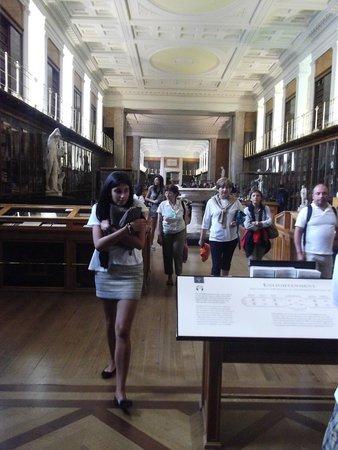 Museo Británico: British 4