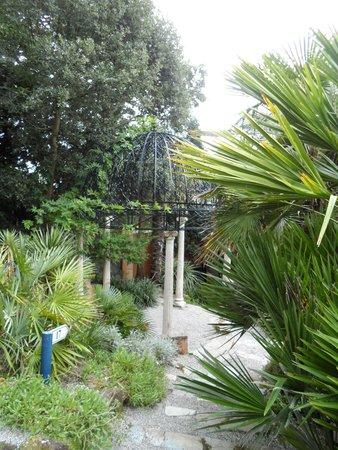 Lamorran House Garden: Garden