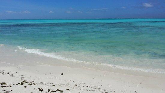 Zanzest Beach Bungalows: Il mare incredibile di Jambiani