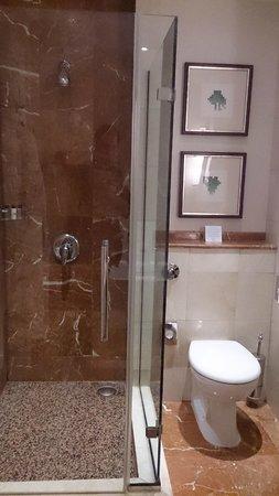 Corinthia Hotel Budapest: The shower