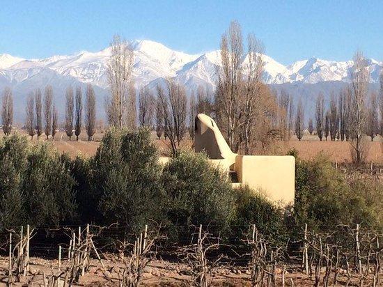 Cavas Wine Lodge: Habitacion entre los viñedos