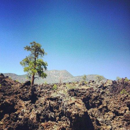 Wupatki National Monument : Sunset Crater Volcano